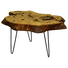 Oak Tree Live Edge Coffee Table with Hairpin Legs / LECT155