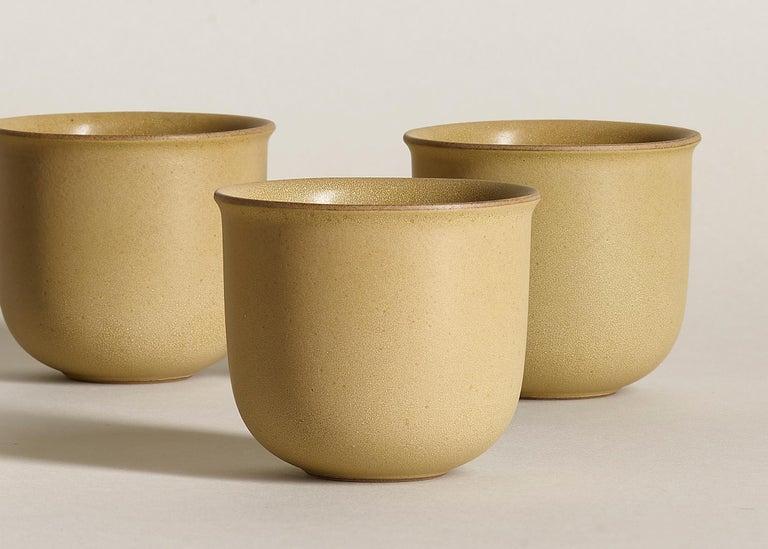 Other Ochre, Teacups, Set of 6, Slip Cast Ceramic, N/O Service Collection For Sale
