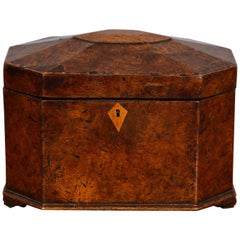 Octagonal Burl Oak Tea Caddy