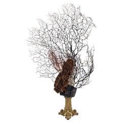 Odysśee de la Mer Coral Quartz Sea Fan Bronze Sculpture