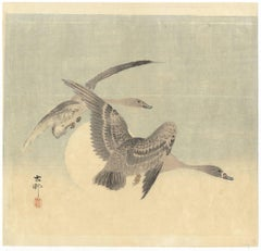 Bird & Flower, Ohara Koson, Moon, Shin Hanga, Japanese Woodblock Print, Geese