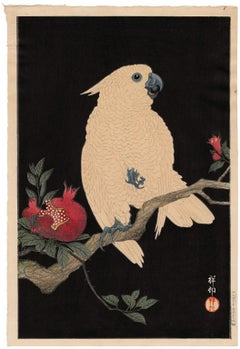 Cockatoo on Pomegranate — Lifetime Impression