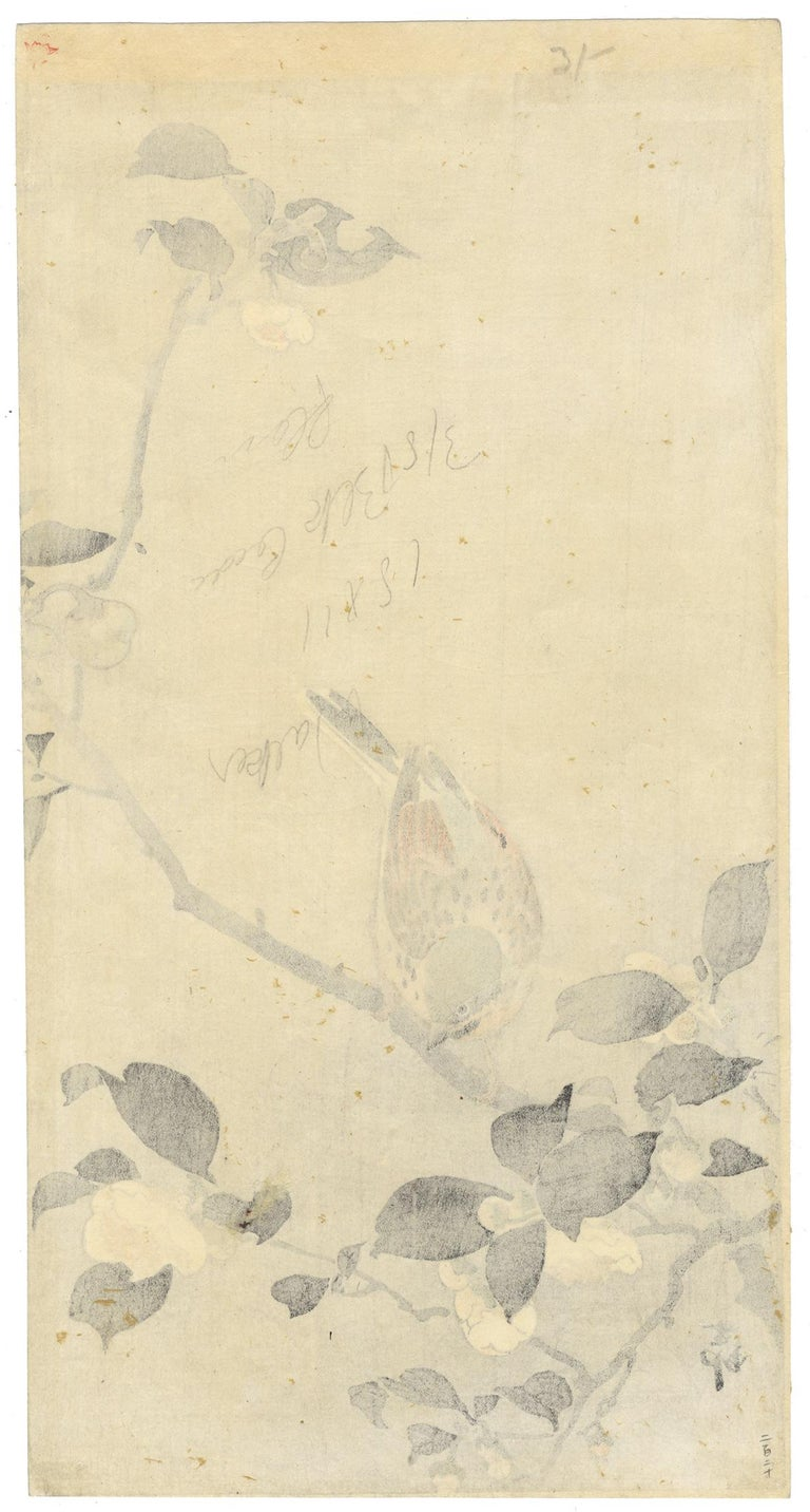 Artist: Koson Ohara (1877-1945) Title: Bunting perched on a camellia branch Publisher: Daikoku-ya Date: Early 20th century Dimensions: 18.8 x 37.1 cm  Koson arranges his composition of a bunting on a camellia branch with ample negative space. In
