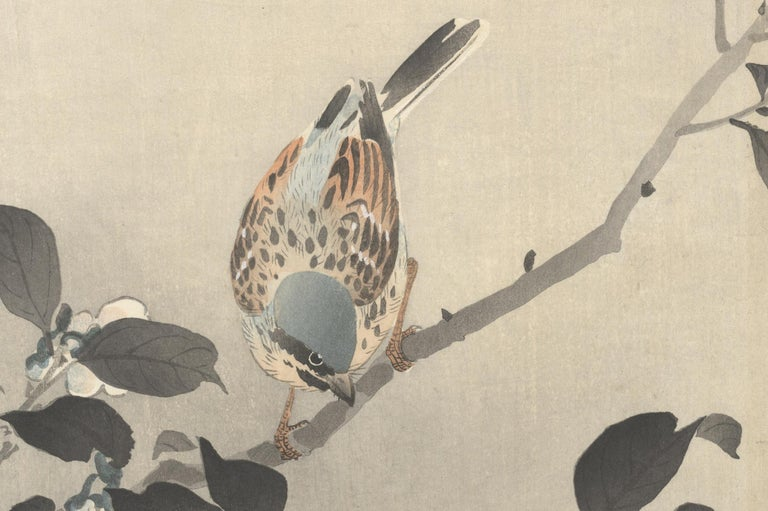 Ohara Koson, Original Japanese Woodblock Print, Camelia, Bird, Ukiyo-e, Spring For Sale 2