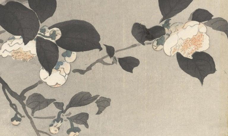 Ohara Koson, Original Japanese Woodblock Print, Camelia, Bird, Ukiyo-e, Spring For Sale 4