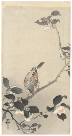 Ohara Koson, Original Japanese Woodblock Print, Camelia, Bird, Ukiyo-e, Spring