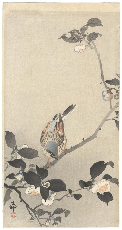 Ohara Koson, Original Japanese Woodblock Print, Camelia, Bird, Ukiyo-e, Spring - Beige Animal Print by Ohara Koson