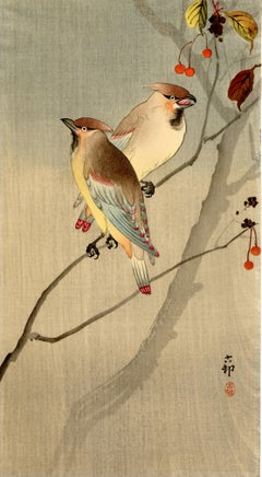Two Japanese Waxwings with Red Berries