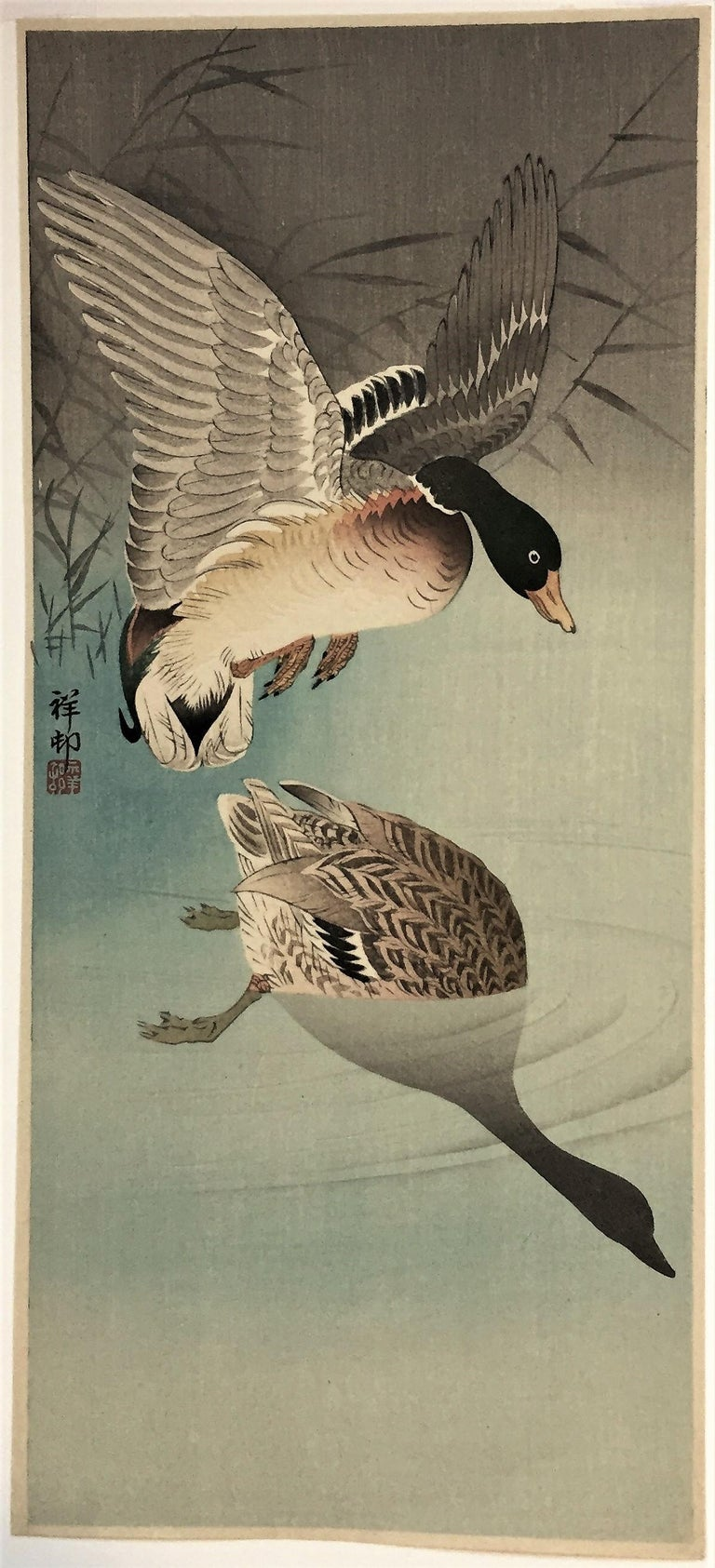 Two Wild Ducks in Flight Above Reeds, a Full Moon Behind. - Showa Print by Ohara Koson