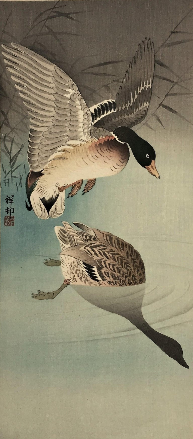 Two Wild Ducks in Flight Above Reeds, a Full Moon Behind. - Black Animal Print by Ohara Koson