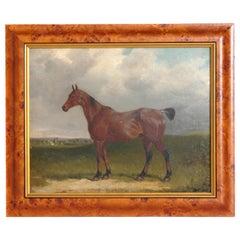 Oil on Board Horse Portrait