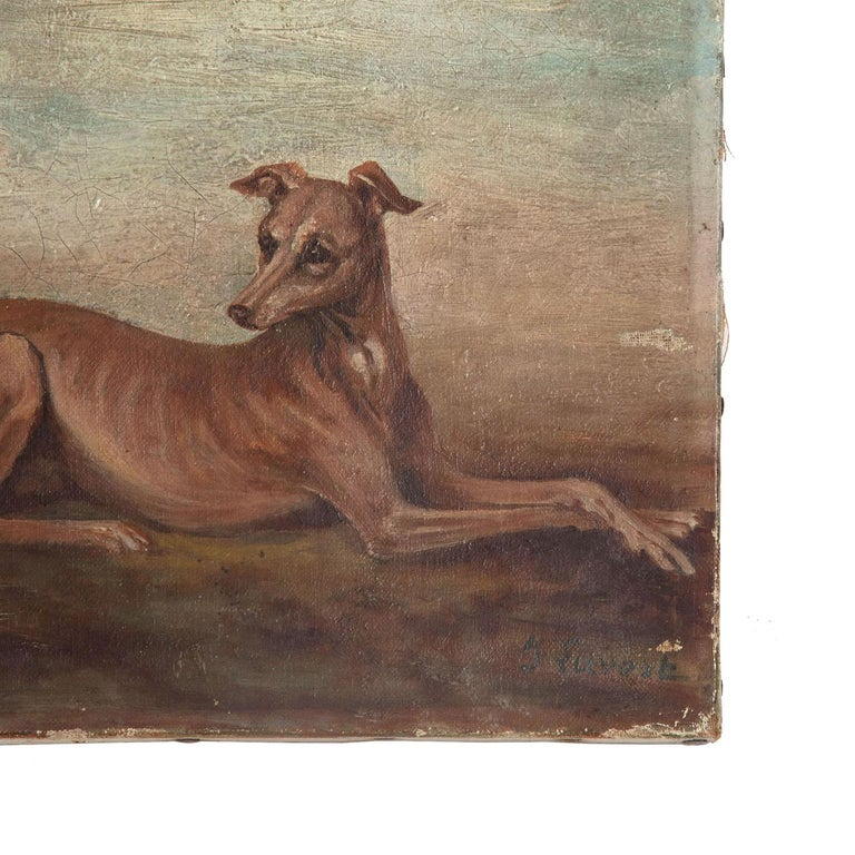 Oil on Canvas Painting of Whippets In Good Condition For Sale In Tetbury, Gloucestershire