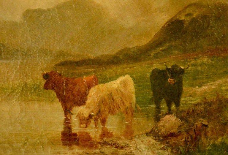 Hand-Painted Oil on Canvas, Scottish Cattle For Sale