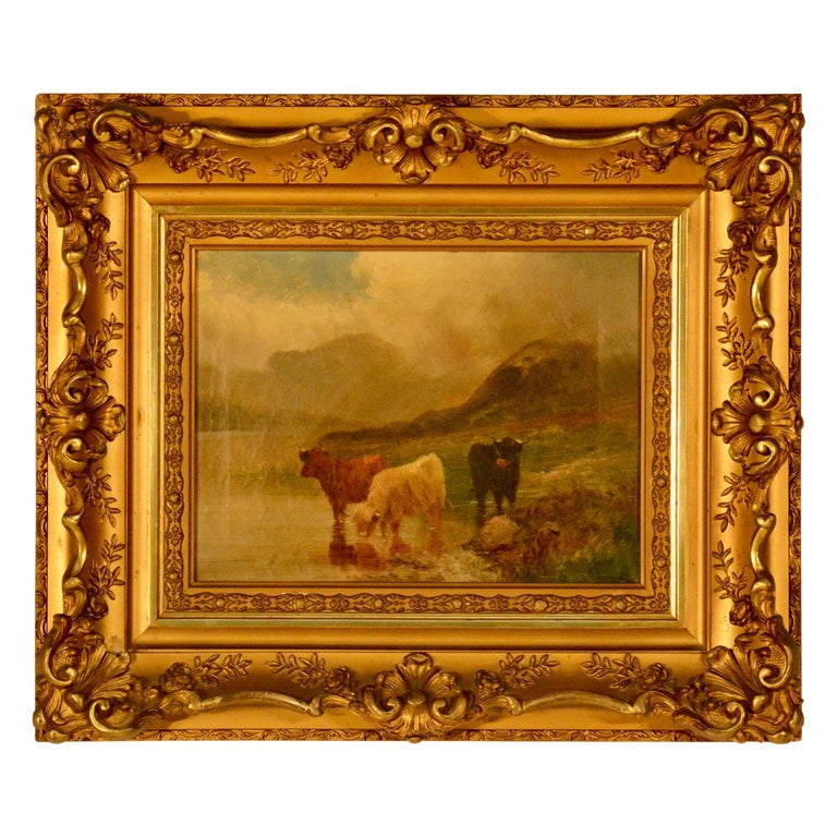 Oil on Canvas, Scottish Cattle For Sale