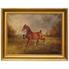 Oil Painting of a Horse by Herbert St John Jones