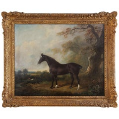 Oil Painting of a Horse Standing Proud in Woodland