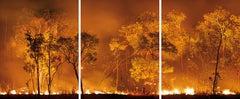 Bushfire Lit to Clear Land, Australia, 2008