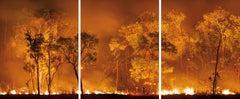 Bushfire Lit to Clear Land, Australia, 2008 - Olaf Otto Becker