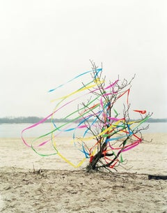 Contemporary Photography: Ribbon River