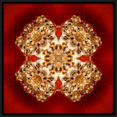 """""""Pépite 3"""", Gold Nugget on Red Semi-abstract Printed Photography on Dibond Panel"""
