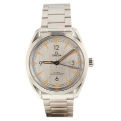 Omega Seamaster 220.10.40.20.06.001, Silver Dial, Certified and Warranty