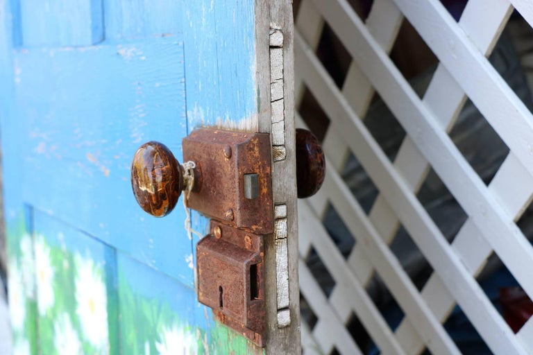 Old Antique Door. Hand Painted Chippy Blue and Beautiful Daisies.  Tortoise Knob In Distressed Condition For Sale In Westport, CT