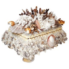 One-of-a-Kind Handmade Exotic Sea Shell Encrusted Large Scale Jewelry Box