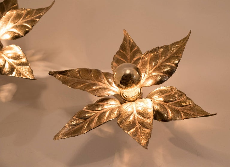 Belgian One of Five of Willy Daro Style Brass Flowers Wall Lights For Sale