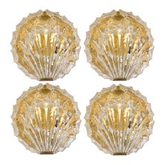 One of the Four Golden Ice Glass Shell Wall Sconces from Kalmar, 1960s