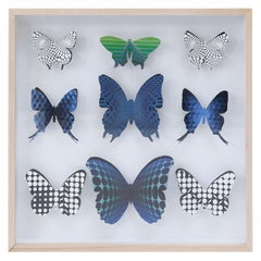 Op Art Butterfly Box