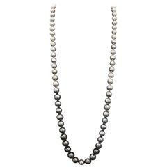 Opera Ombre Tahitian Pearl Necklace Diamond Clasp