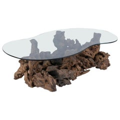 Organic Burl Wood Coffee Table