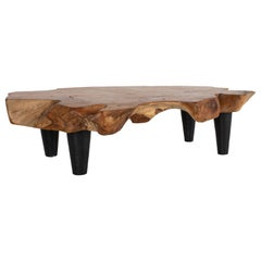 Organic Form Teak Coffee Table