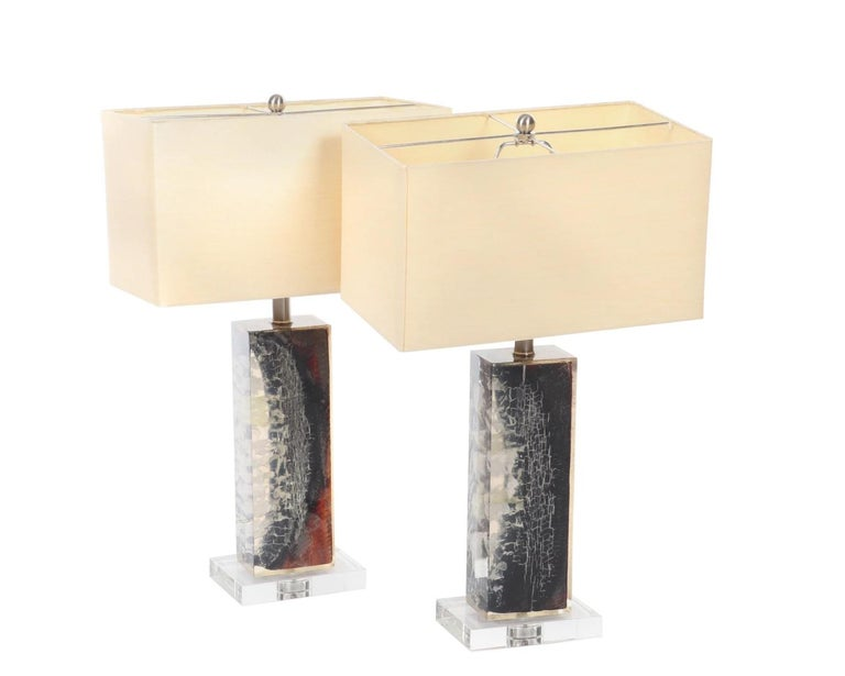 Organic Modern Authentic Pair of Petrified Wood Lucite Lamps-Stunning For Sale 3