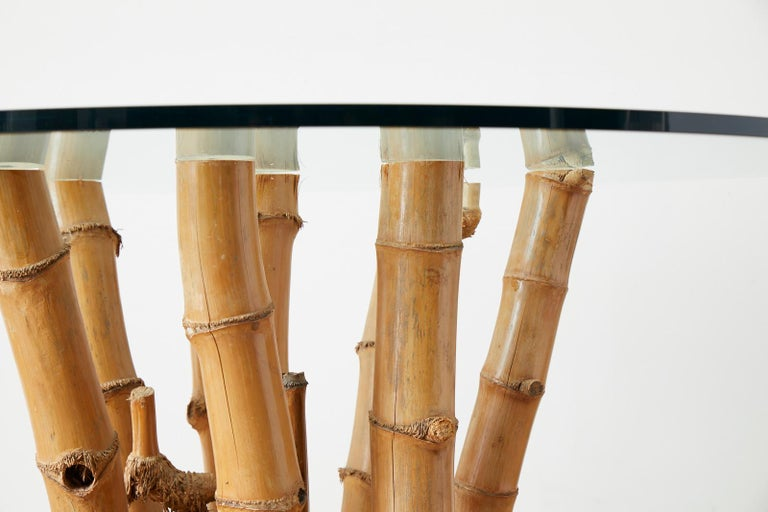 Organic Modern Bamboo Root Glass Top Dining Table For Sale 2