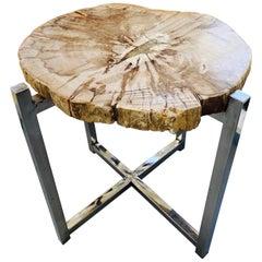 Organic Modern Petrified Wood Slab Side Table, Indonesia, circa 2018
