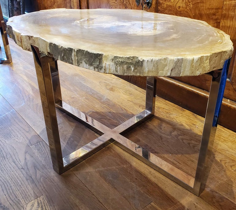 American Organic Modern Petrified Wood Side Table with Chrome Base For Sale
