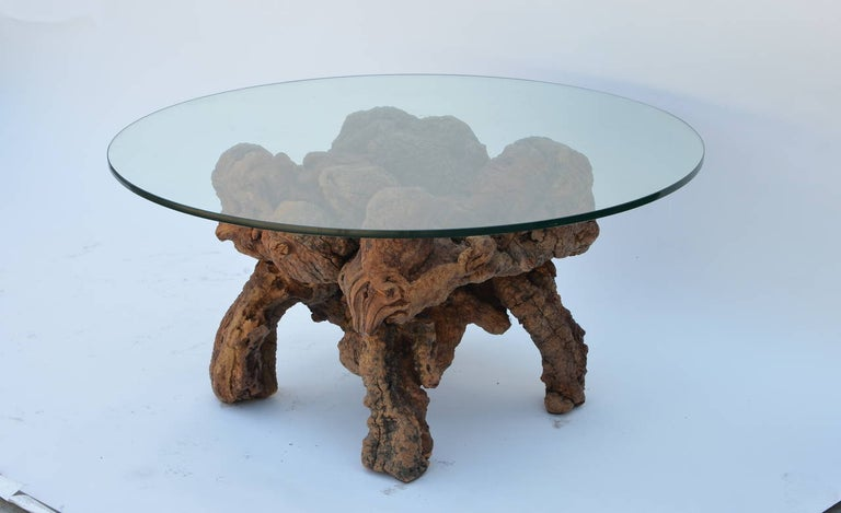 Organic modern Quadripod wood and glass coffee table. Sculptural natural bog wood base contrasting with the simple glass top (1/2 in. thickness).