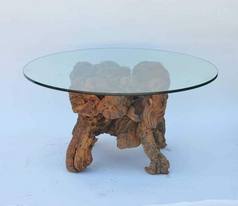 American Organic Modern Quadripod Bog Wood and Glass Coffee Table For Sale