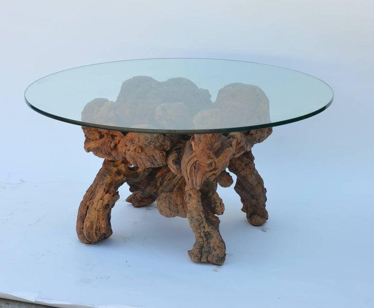 Organic Modern Quadripod Bog Wood and Glass Coffee Table For Sale 2