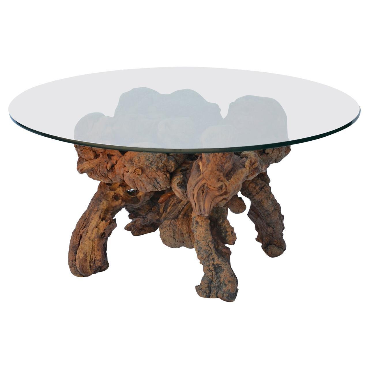 Organic Modern Quadripod Bog Wood and Glass Coffee Table