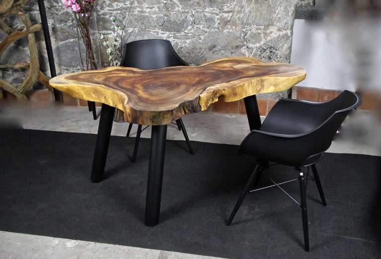 Unusual shaped organic modern Suar wood dining table. Standing on three massive round black metal feet, this extraordinary mid-sized dining table or coffee table (for four persons) stands out with its unique shape, grain and coloration. The