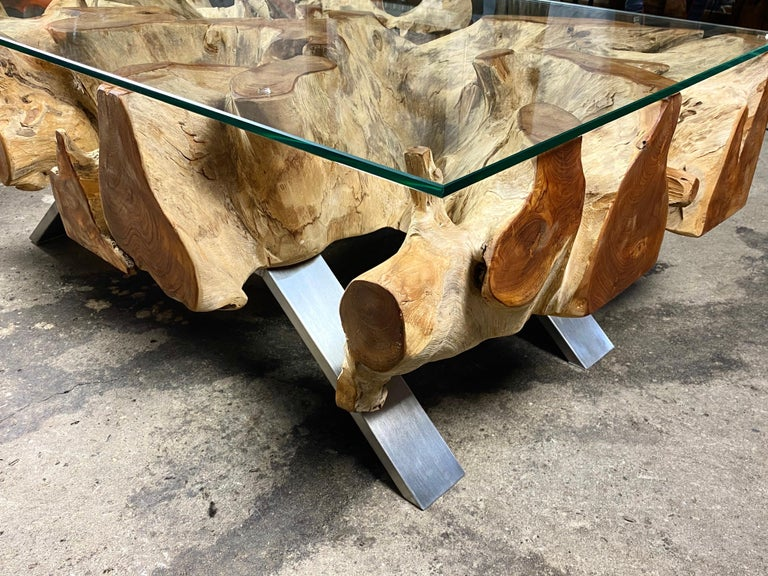 Organic Modern Teak Root Coffee Table with Safety Glass Plate For Sale 5