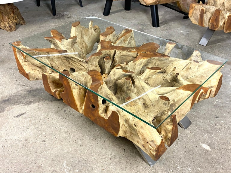 Organic Modern Teak Root Coffee Table with Safety Glass Plate For Sale 1