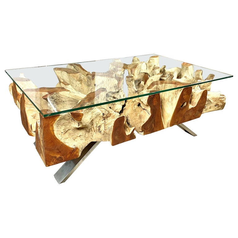 Organic Modern Teak Root Coffee Table with Safety Glass Plate For Sale