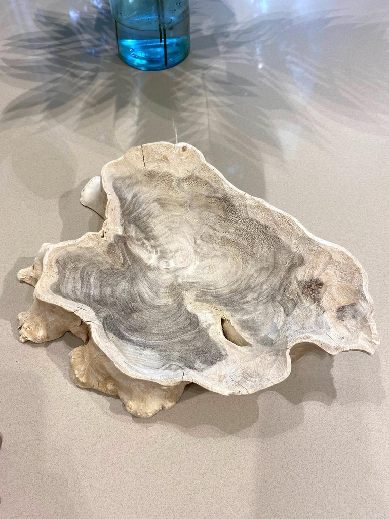 Bleached Organic Modern White Washed Teak Bowl with Live Edge, Indonesia For Sale