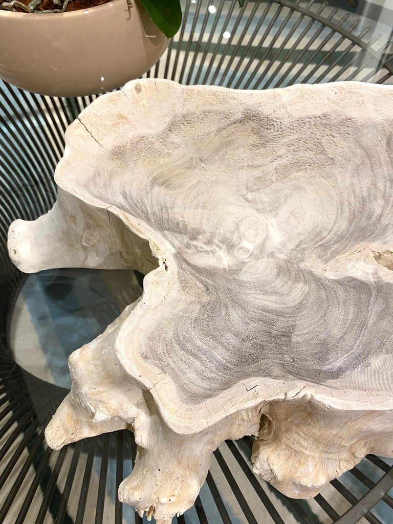 Organic Modern White Washed Teak Bowl with Live Edge, Indonesia For Sale 3