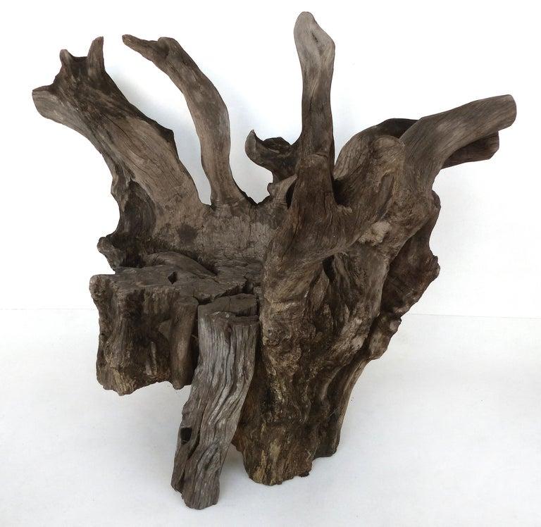 Organic Modern Organic Studio Sculptural Tree Trunk Root Chair from Belgium For Sale