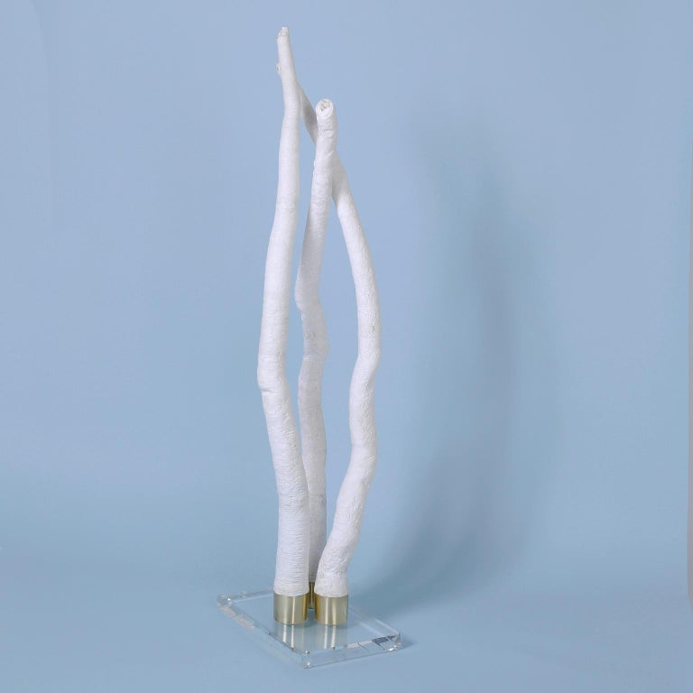 Tall elegant tube shell sculpture designed and executed by F. S. Henemader with a dramatic form and striking bleached white color. Presented on a Lucite base to enhance the sculptural elements.