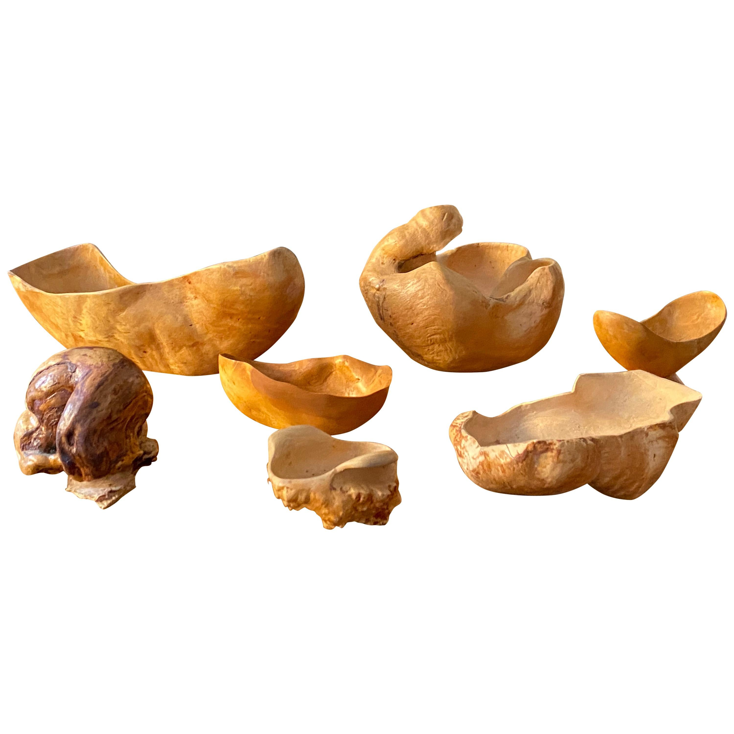 Organic Vintage Bowls and a Sculpture Hand-Sculpted Root, Wood, Sweden, 1970s